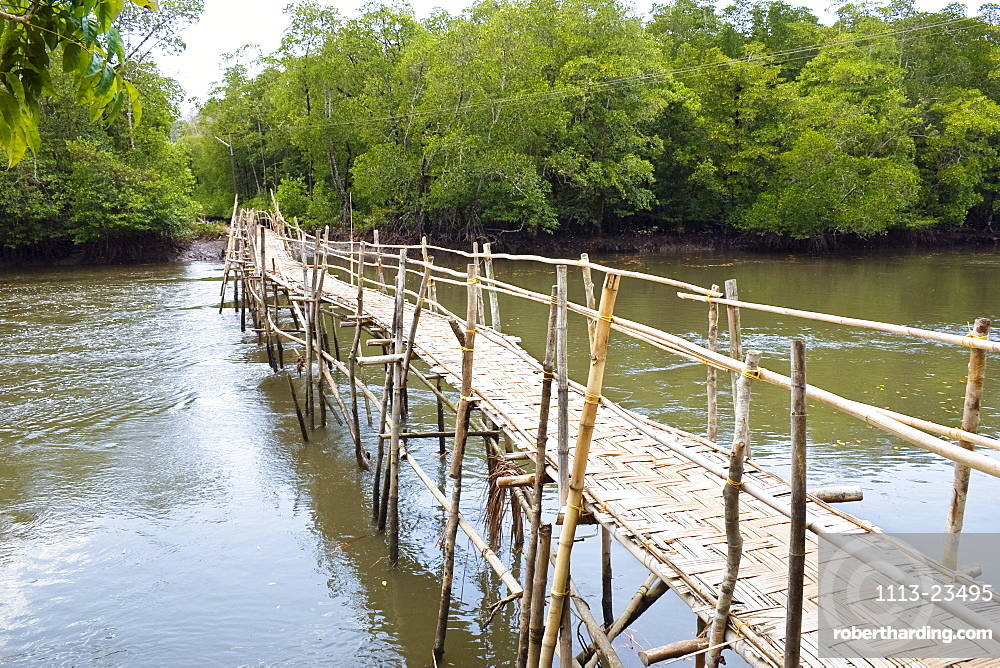 bamboo-bridge, mangroves, Kalighat, Andaman Islands, India