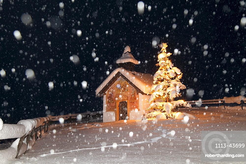Chapel with christmas tree at snowfall, Elmau, Upper Bavaria, Germany, Europe