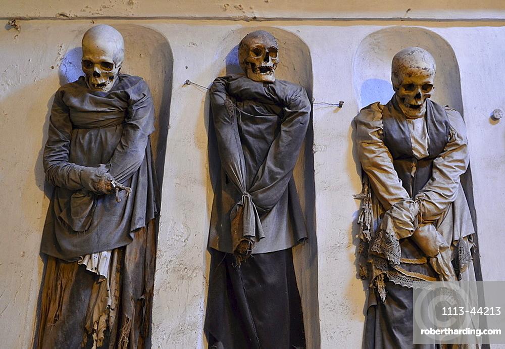 Three mummies, catacombs, Abbey dei Cappuccini, Palermo, Sicily, Italy