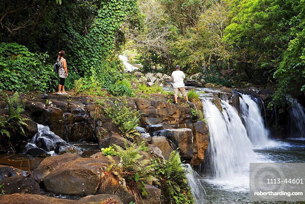 Waterfall in the garden of the colonial villa Eureka in Moka, Mauritius, Africa