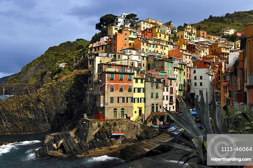 Colourful houses on the waterfront in the sunlight, Riomaggiore, Cinque Terre, La Spezia, Liguria, Italy, Europe