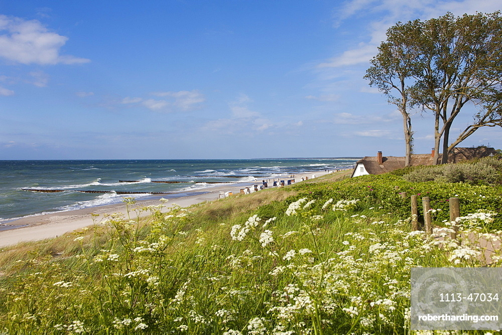 House with thatched roof on the beach, Ahrenshoop, Fischland-Darss-Zingst, Baltic Sea, Mecklenburg-West Pomerania, Germany