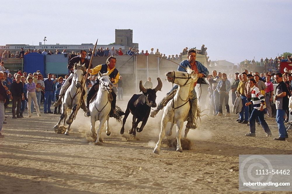Riders and spectators at the celebration of the bulls of the Camargue, Aigues-Mortes, Gard, Provence, France, Europe