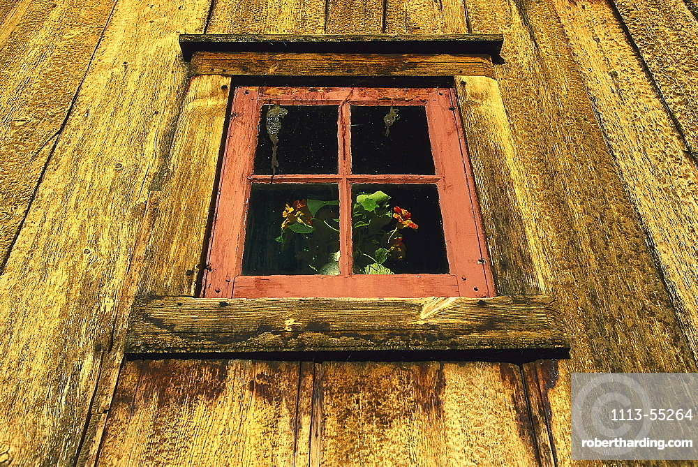 Window of a church, Detail, Lom, Oppland, Norway