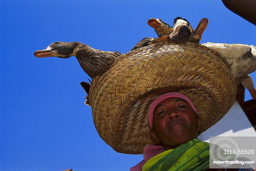 Saleswoman with ducks, Betafo, Madagascar
