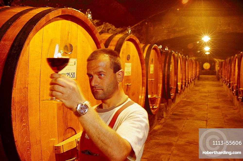 Badia a Coltibuono, vine cellar, Gaiole, Chianti, Tuscany, Italy