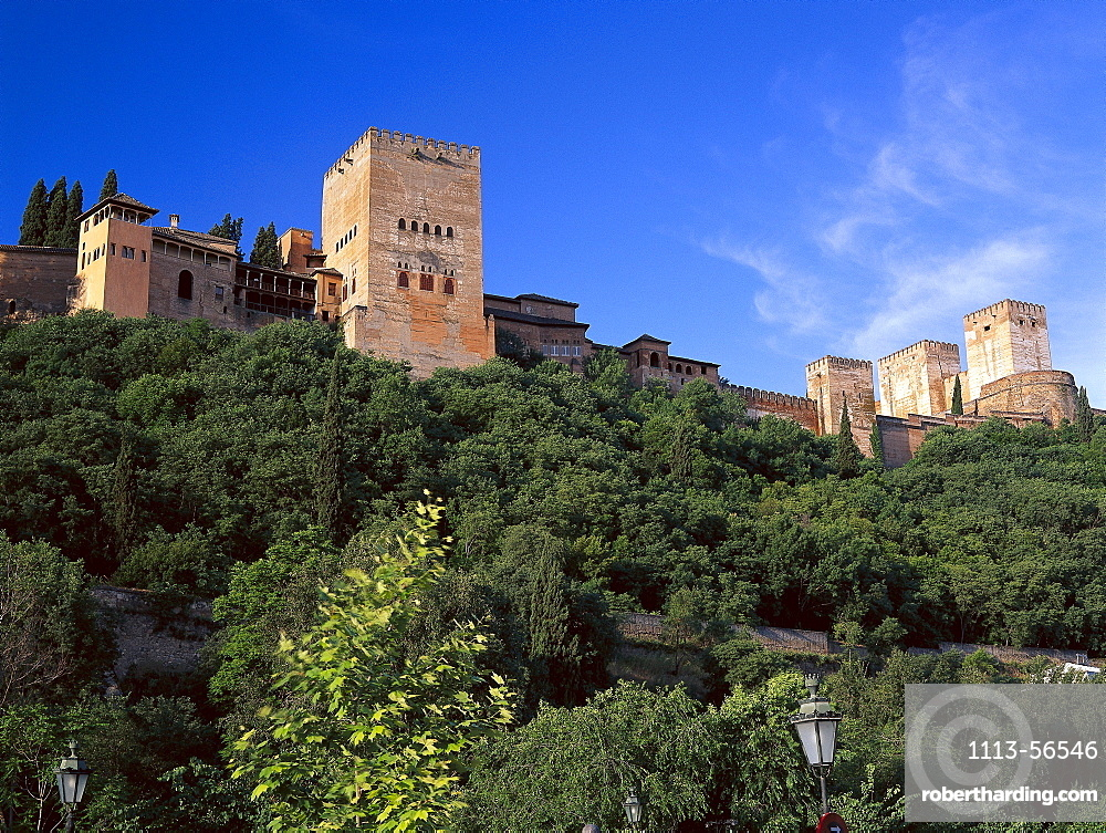 View from the Darro River valley up to the Alhambra, Moorish palace, Granada, Andalusia, Spain