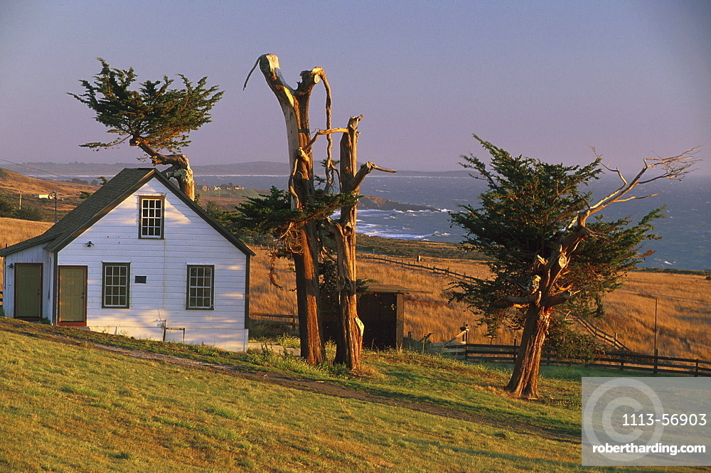 Wooden house and coast area in the evening sunlight, Sonoma Coast State Beaches, Sonoma County, California, USA, America
