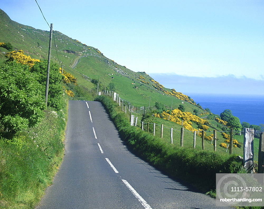 Country road at the coast, Torr Head, Antrim, Northern Ireland, Great Britain, Europe