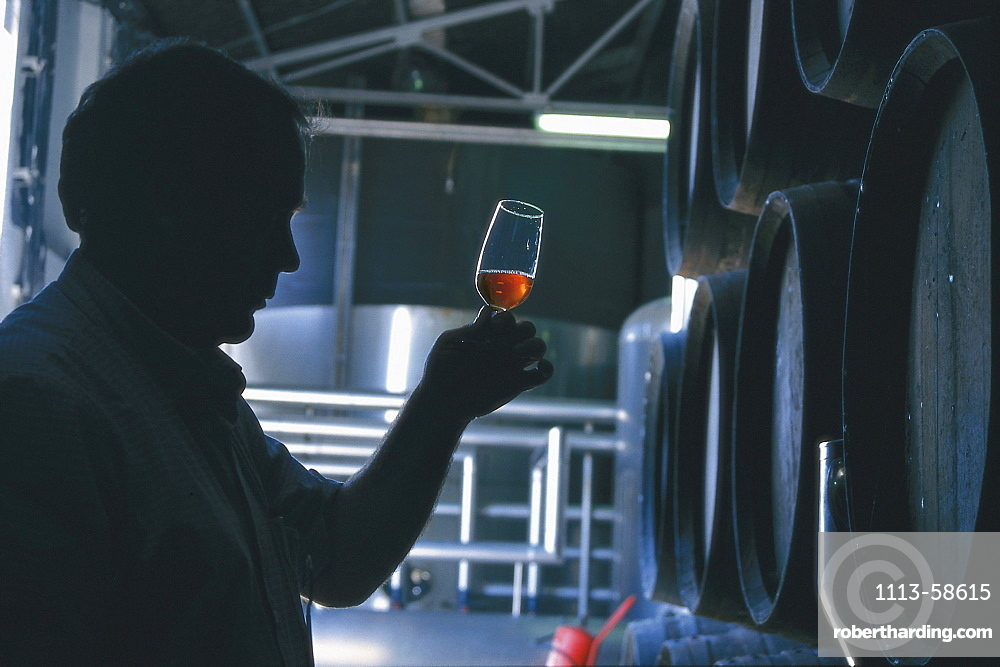 A man tasting sherry, Jerez, Andalusia, Spain, Europe