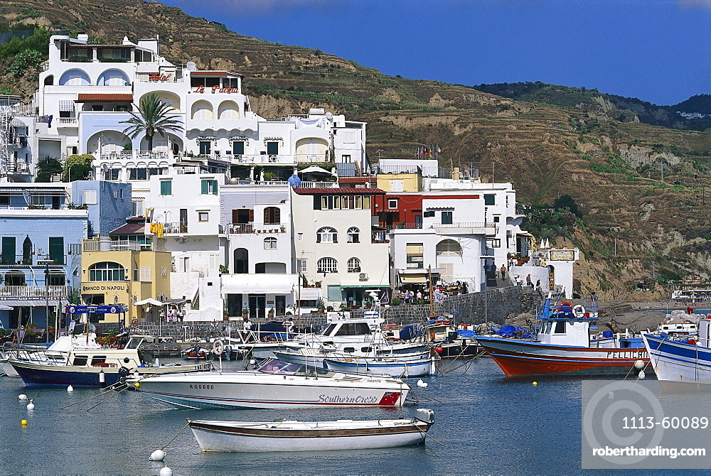 Boats at harbour in front of houses in the sunlight, Sant¥ Angelo, Ischia, Campania, Italy, Europe