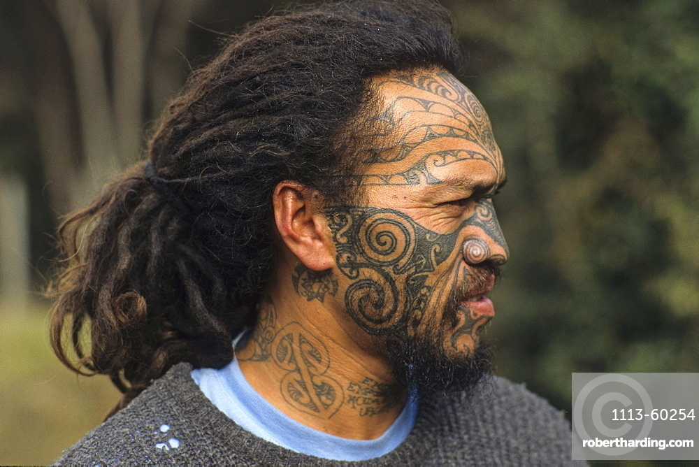 Portrait of a Maori man with moko face tattoo, North Island, New Zealand, Oceania