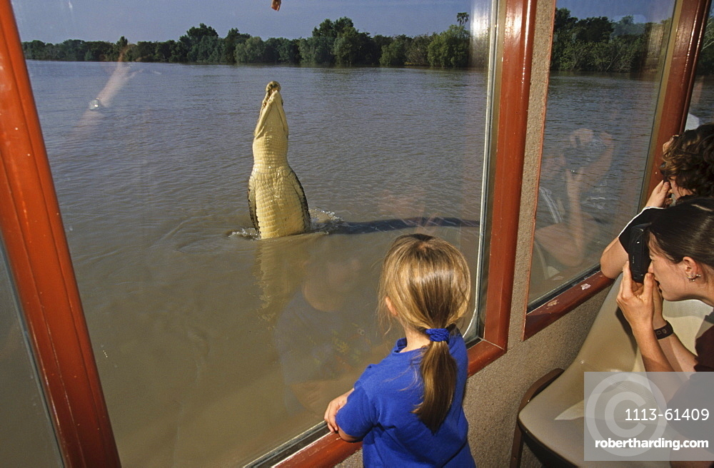Tourist attraction, jumping crocodiles, Adelaide River, Northern Territory, Australia