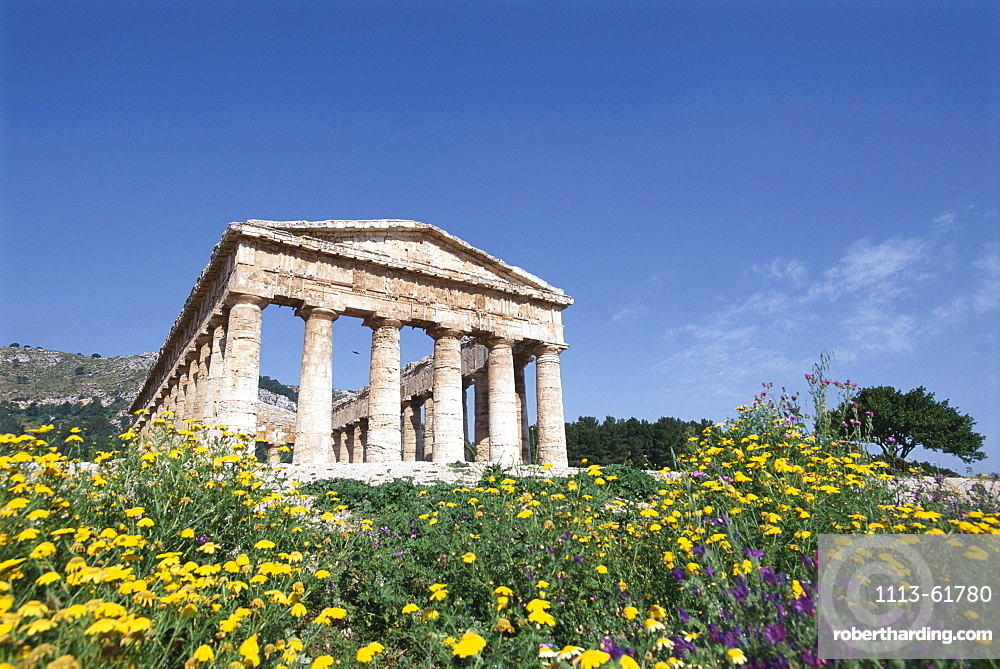 Ruins of a temple under blue sky, Segesta, Sicily, Italy, Europe