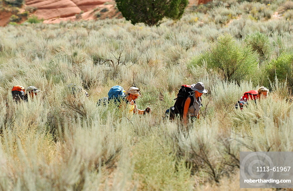 A group of people hiking in the countryside, Arizona, USA