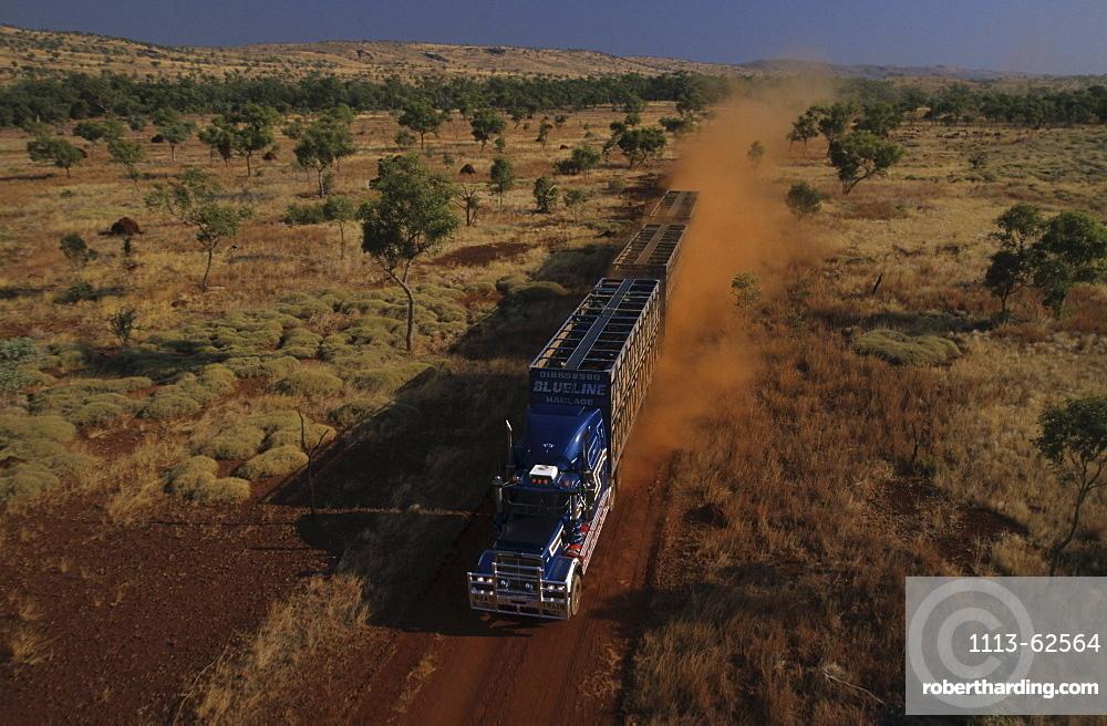 Aerial view, Cattle truck on dirt road in the Kimberleys, desert and savannah, Kimberley, Western Australia, Australia