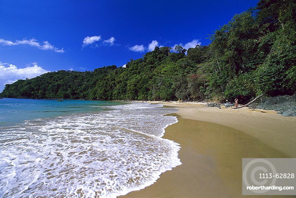 Sandy beach, Pirate¥s Bay, near Charlotteville, Tobago, West Indies, Caribbean