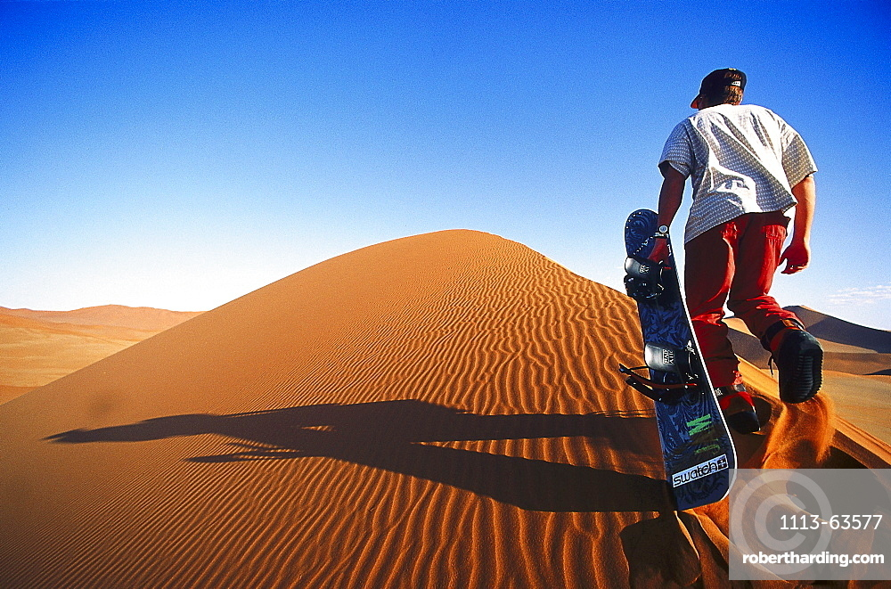 Sandboarder on a dune, Namibia, Africa