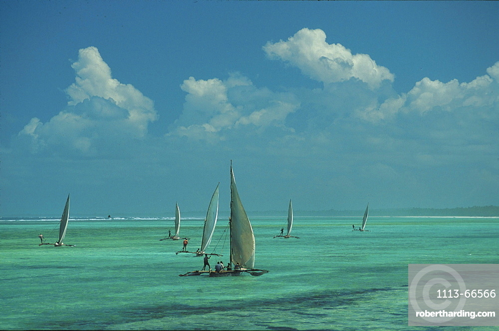 Dhows on Sea, Maternwe, Zanzibar, Tanzania