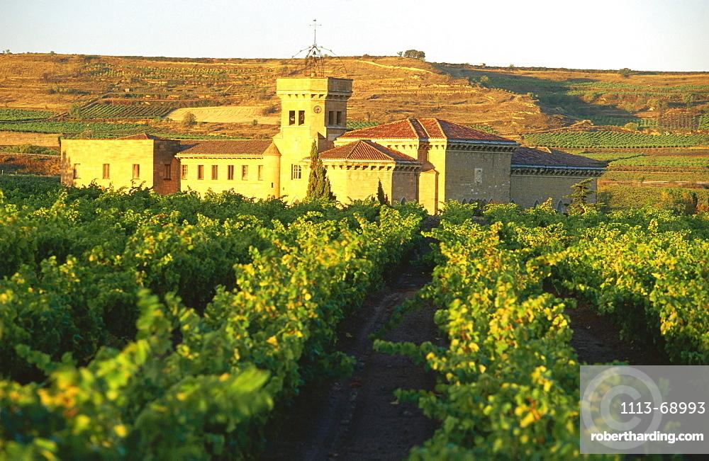 Vineyards and monastey, Monasterio de la Estrella, near San Asensio (Haro), La Rioja, Spain