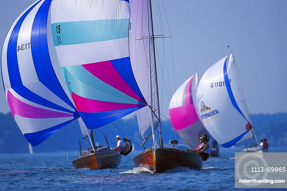 Sailing regatta, large dinghy sailing, Chiemsee Lake, Bavaria, Germany00022805
