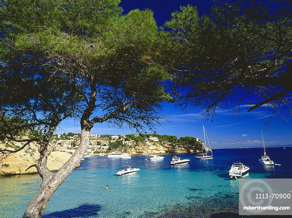 View of the Cala Portals Vells bay, Costa de Calvia, Bahia de Palma, Mallorca, Spain