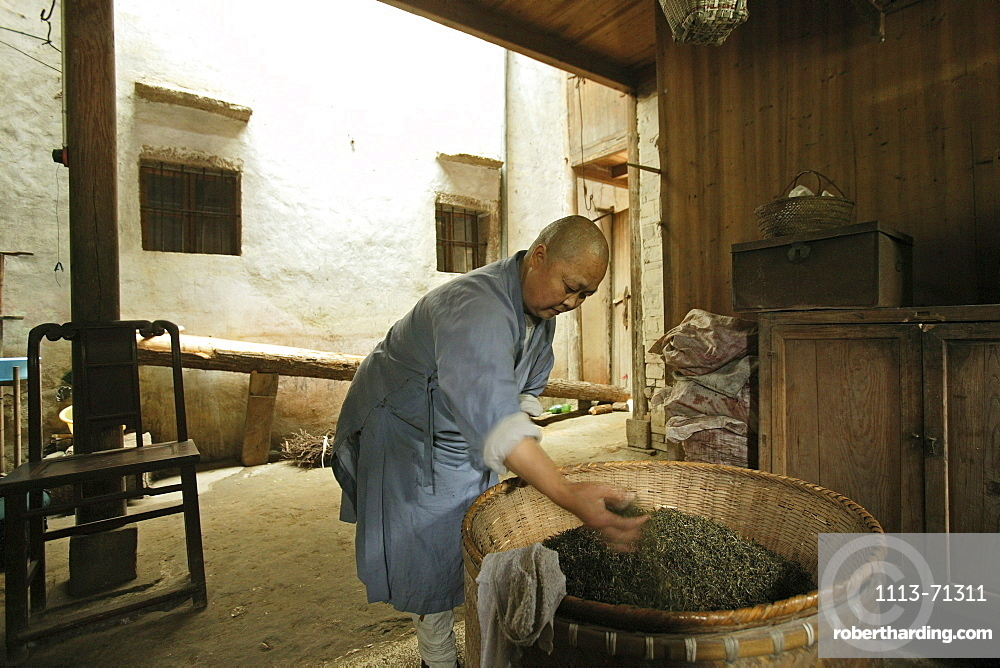 A nun drying tea leaves, nunnery at the village Minyuan, Jiuhua Shan, Anhui province, China, Asia