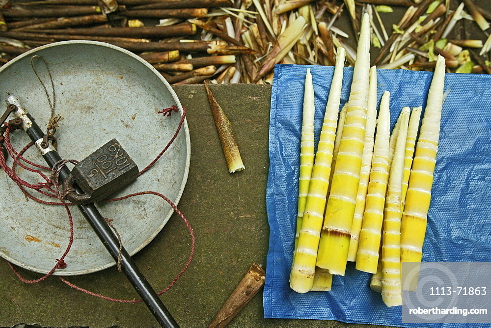 Bamboo shoots for sale and weighing scales, China