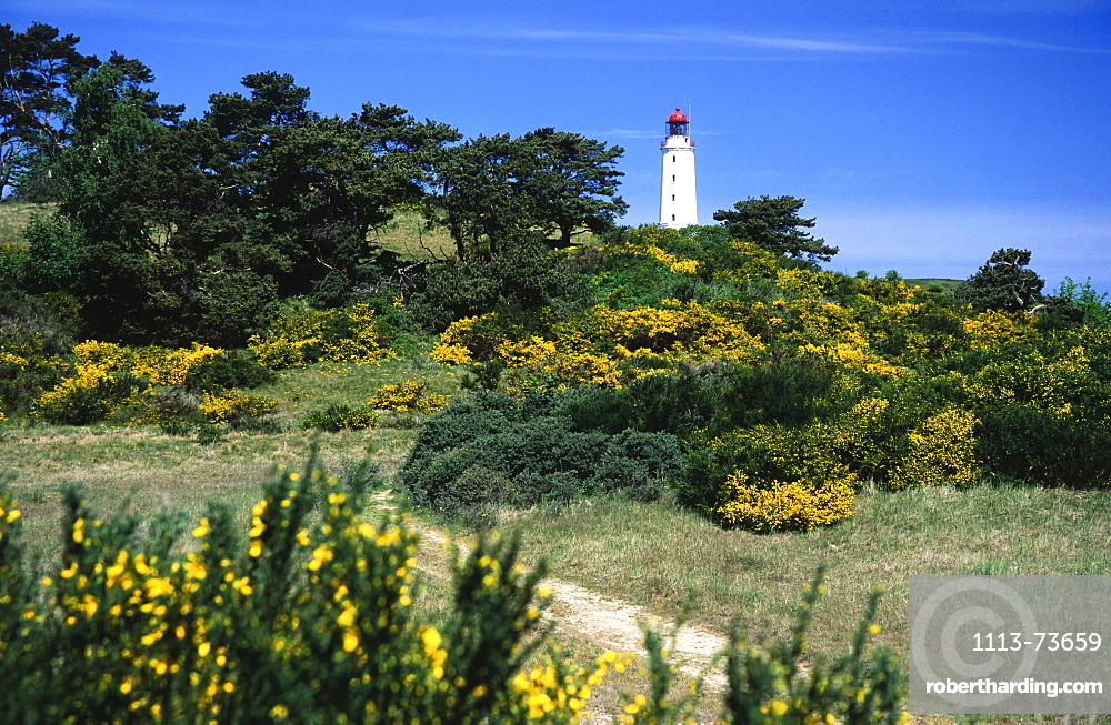 Lighthouse and Dornbusch National Park, Hiddensee Island, Mecklenburg-Western Pomerania, Germany, Europe