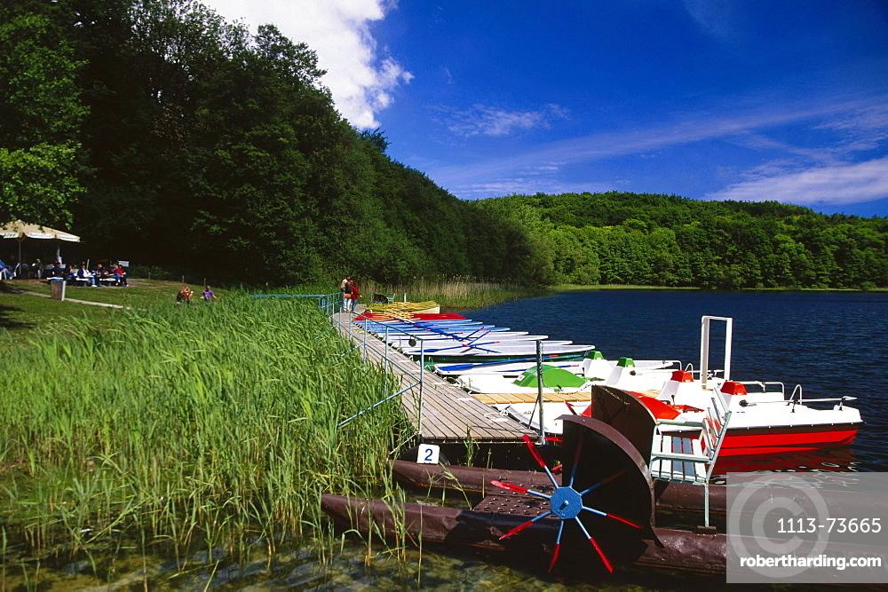 Lake of Wolgast, Natural park Usedom, Usedom Island, Mecklenburg-Western Pomerania, Germany, Europe