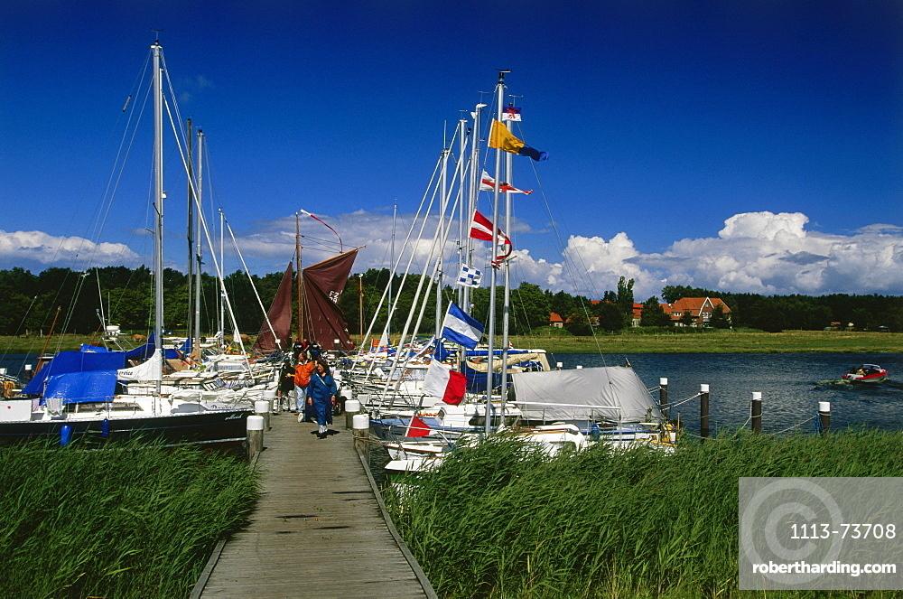 Harbour Prerow, Darss, Mecklenburg-Western Pomerania, Germany
