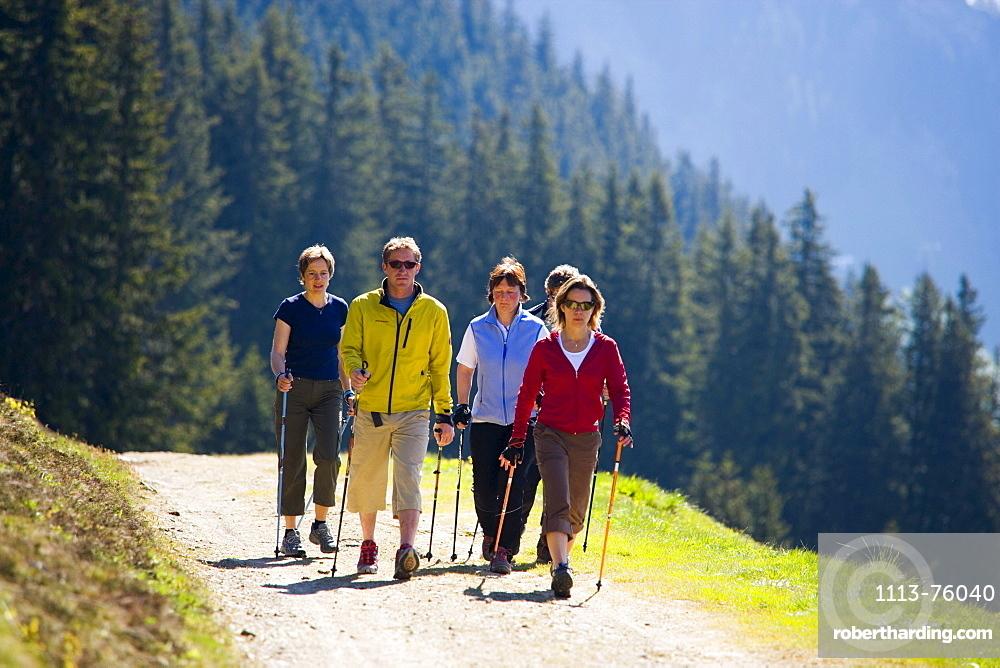 Group of people nordic walking at Bussalp (1800 m), Grindelwald, Bernese Oberland (highlands), Canton of Bern, Switzerland