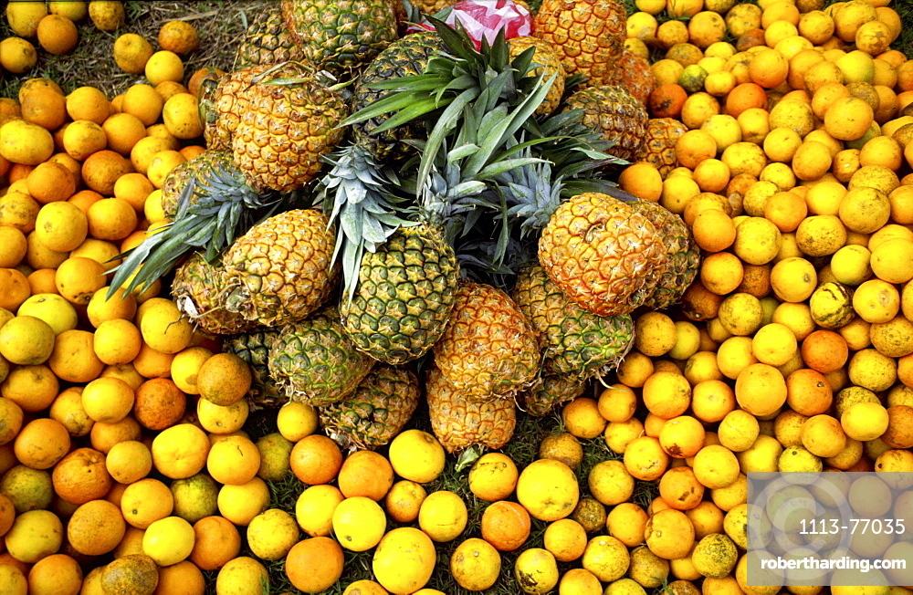 Troical fruit, pineapple, lemon