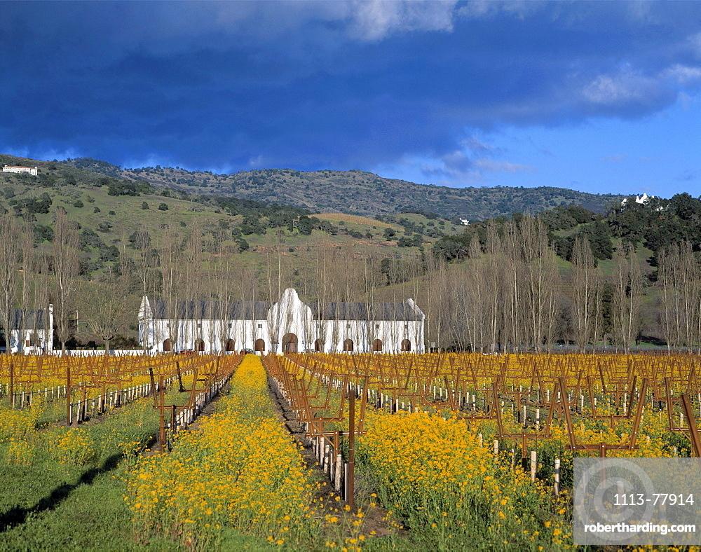 Winegrowing, Nappa Valley, USA