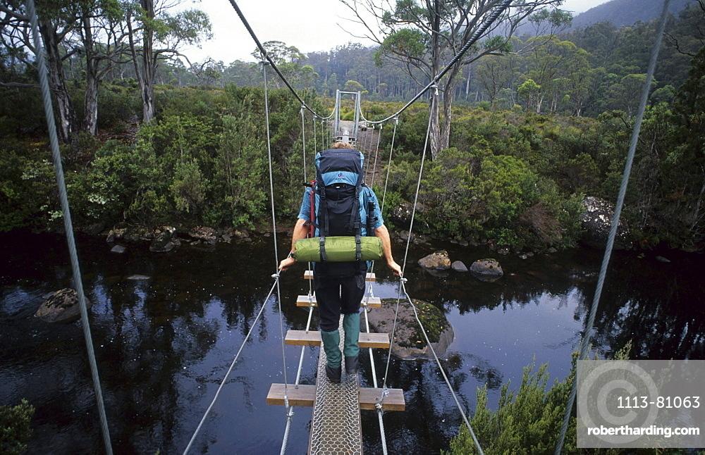 Hiker walking over rope bridge over the Narcissus River, Cradle Mountain Lake St. Clair National Park, Tasmania, Australia