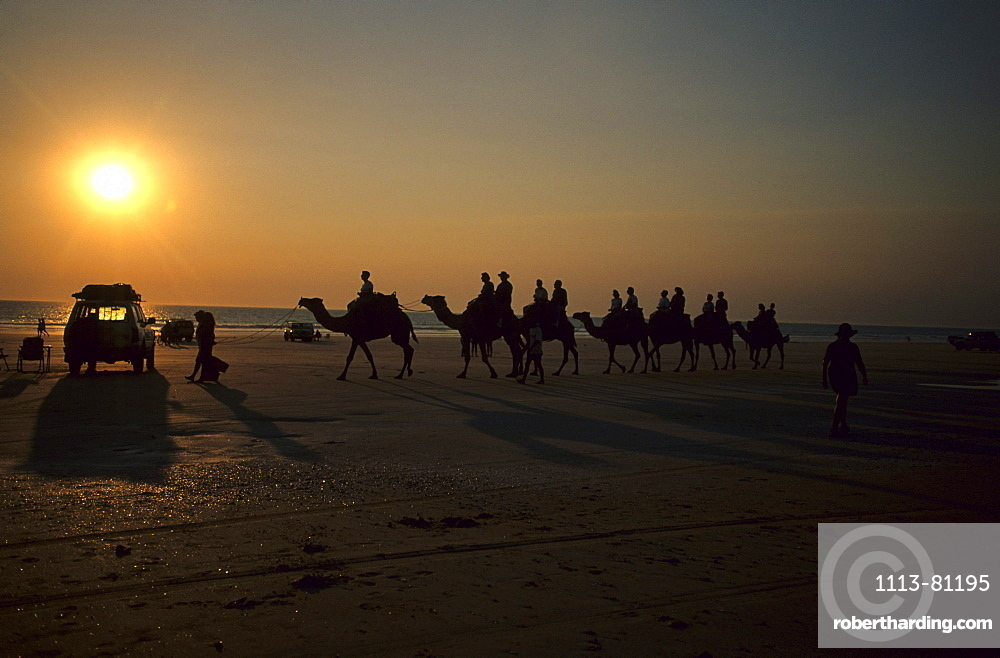 People riding camels on the famous Cable Beach at sunset, Broome, Western Australia, Australia