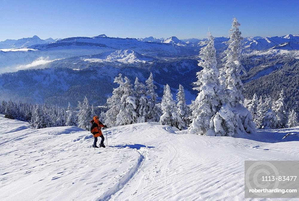 Backcountry skier ascending Riedberger Horn, ski resort Grasgehrenlifte, Obermaiselstein, Oberstdorf, Allgaeu range, Allgaeu, Swabia, Bavaria, Germany