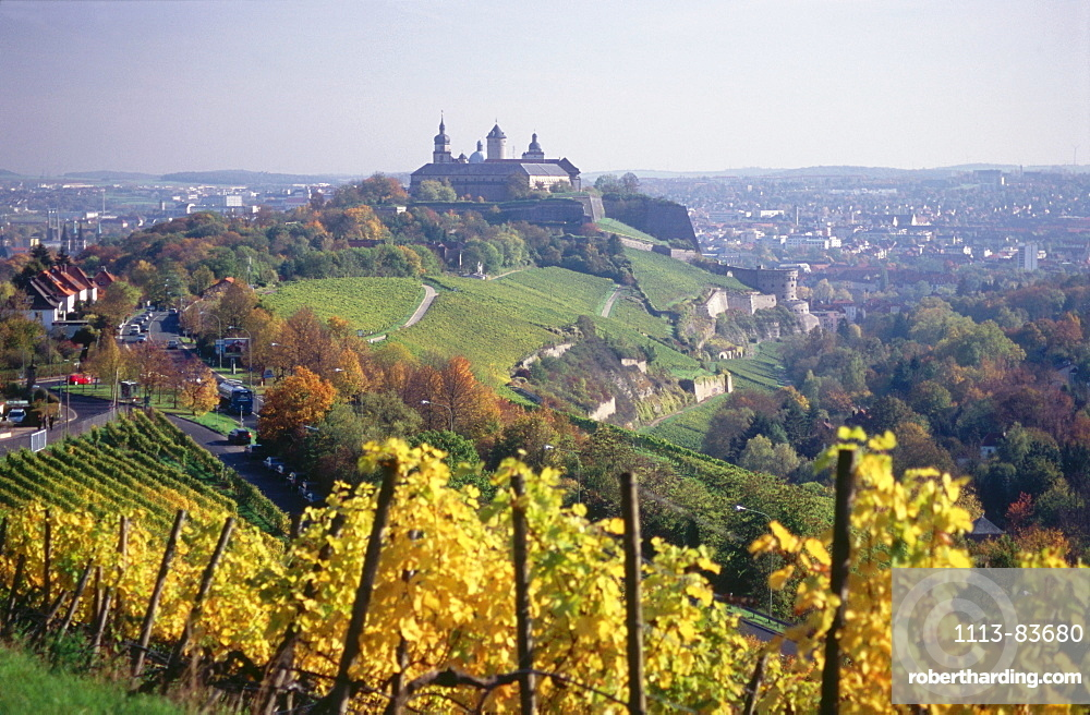 View over vineyard to Fortress Marienberg, Wurzburg, Franconia, Bavaria, Germany