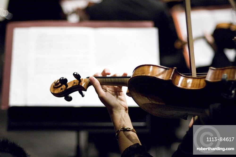 Orchestra, Prinzregententheater, Munich, Bavaria, Germany