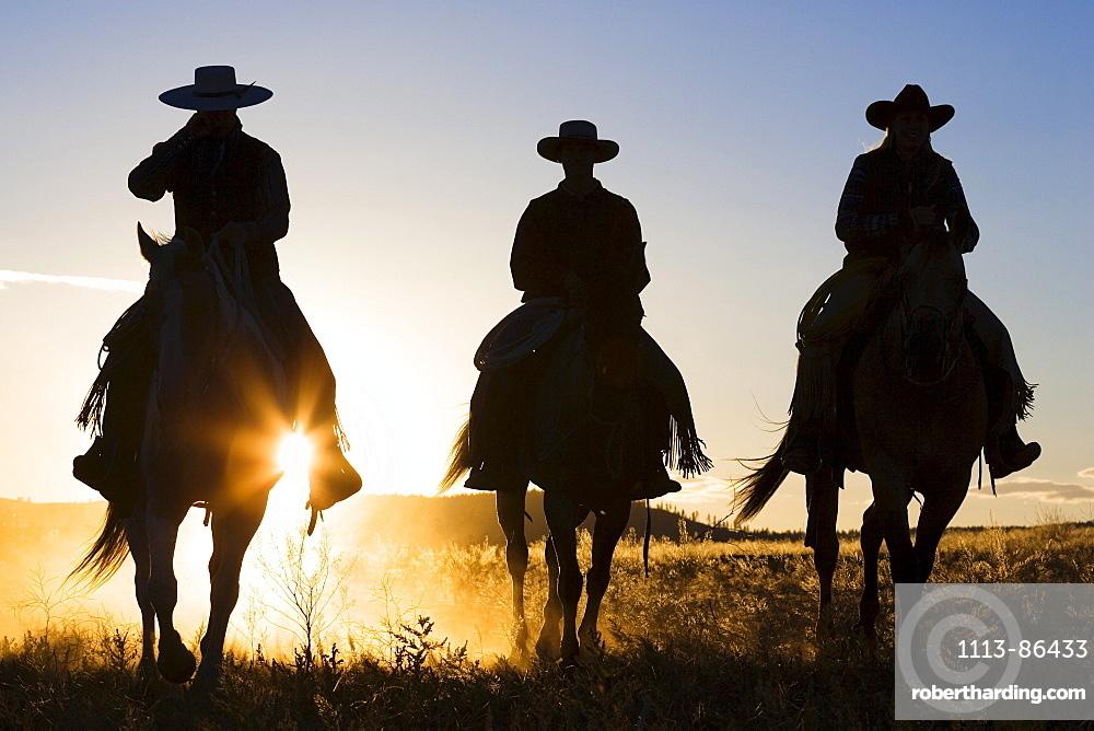 cowboys riding at sunset, Oregon, USA