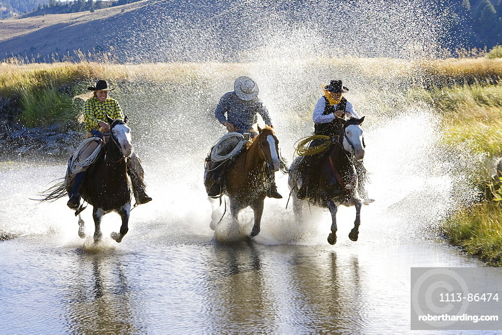 Cowgirl and Cowboys riding in water, wildwest, Oregon, USA