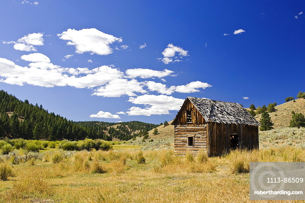 landscape with barn, wildwest, Oregon, USA