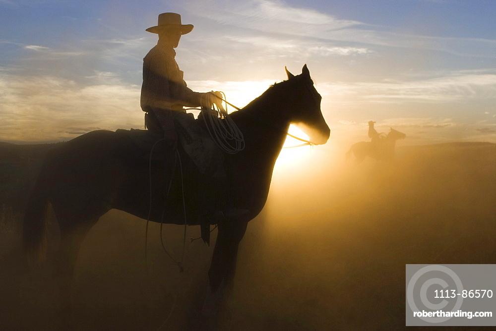 Cowboy riding at sunset, Oregon, USA