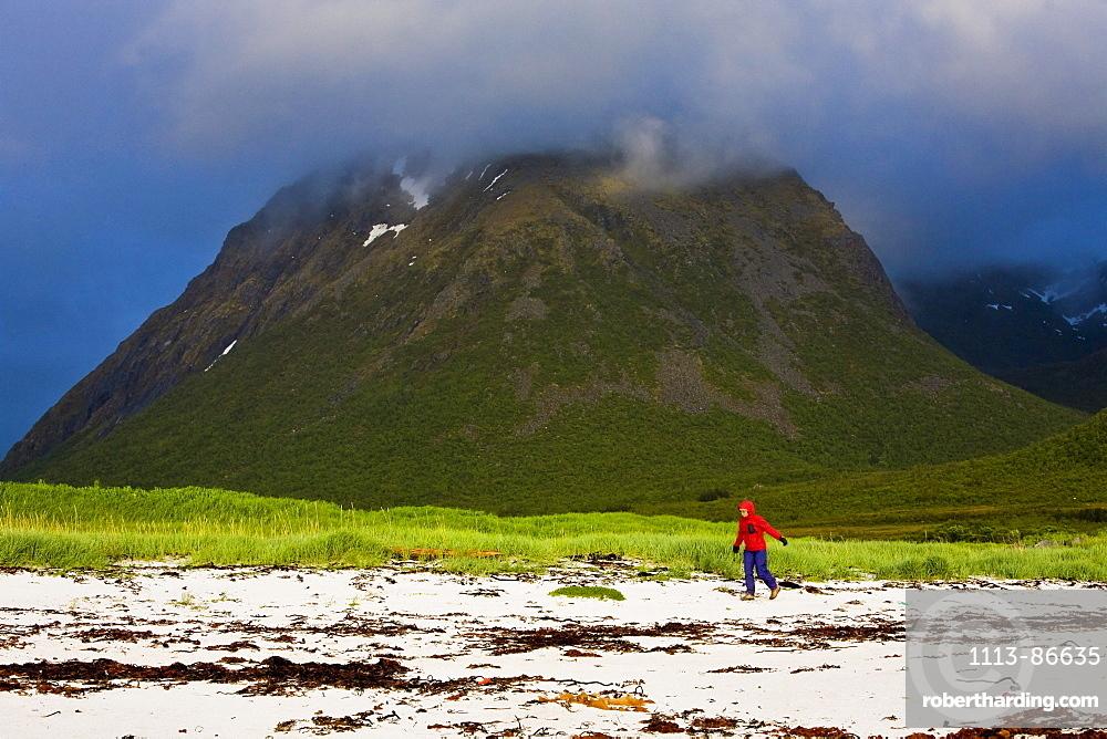A woman walking along the beach in rainclothes, Hadselsand, Lofoten, Norway