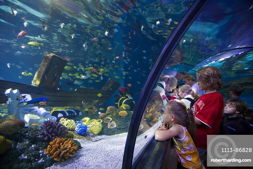 Children Admiring Fish in Atlantis Aquarium Attraction, Legoland, Billund, Central Jutland, Denmark