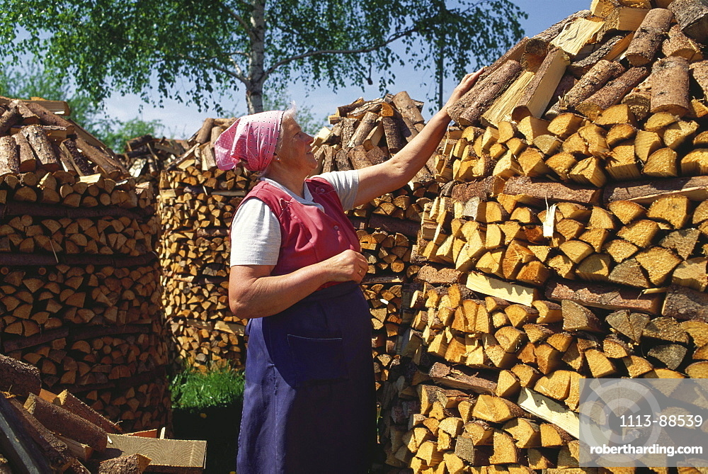 Traditionally dressed farmer woman piling up firewood to artistical heaps, Wiesenfelden, Bavarian Forest, Lower Bavaria, Germany