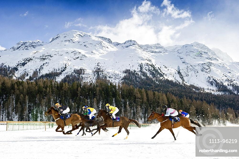 White Turf Horse Race 2013, St. Moritz, Engadine valley, canton of Graubuenden, Switzerland