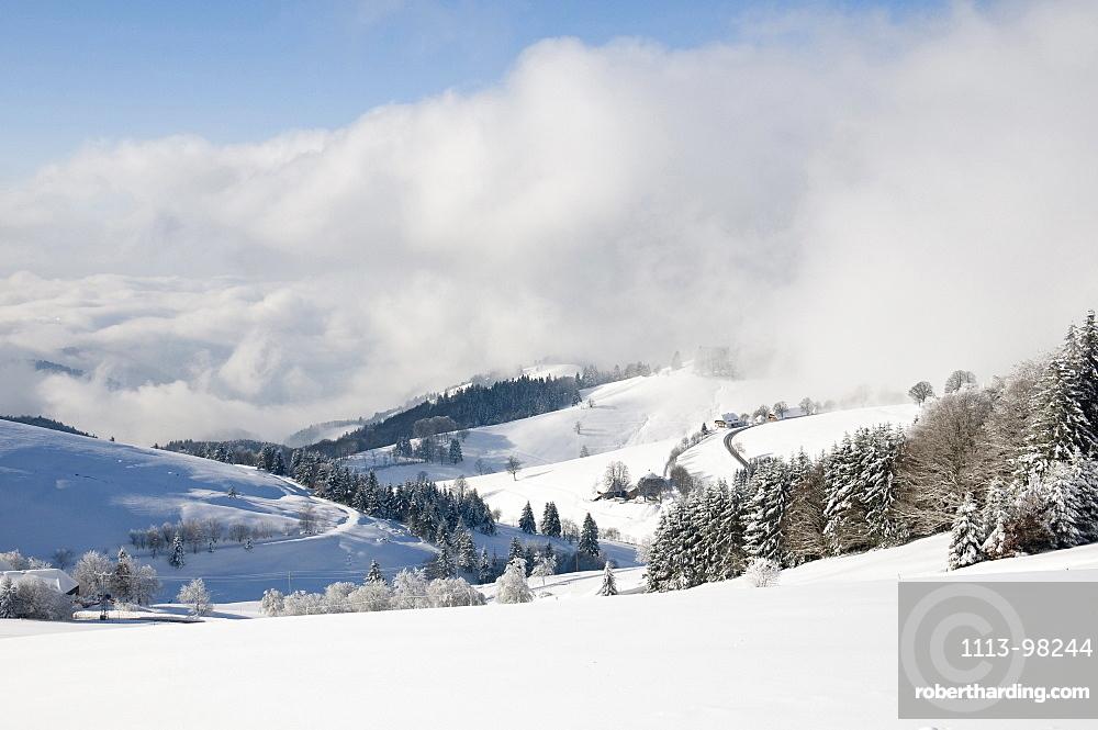 Panoramic view, Schauinsland, near Freiburg im Breisgau, Black Forest, Baden-Wuerttemberg, Germany