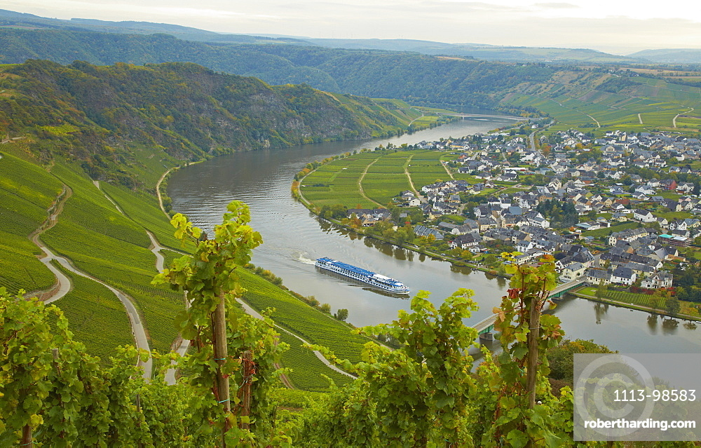 View towards the valley of the river Mosel and Niederemmel, Rhineland-Palatinate, Germany, Europe