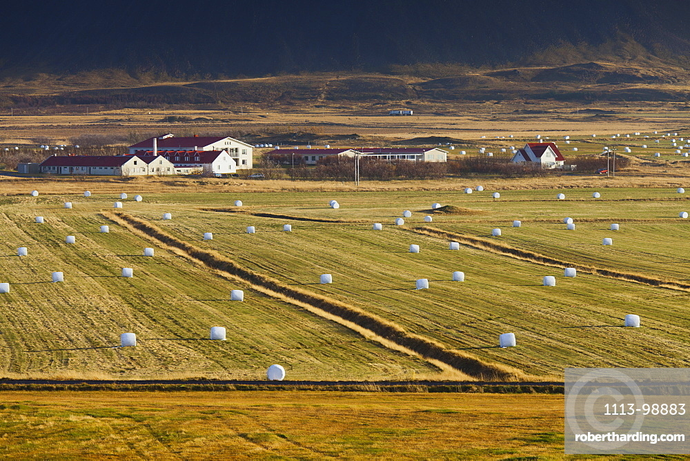 Bales of hay and fields near Brautarholt, West Iceland, Iceland